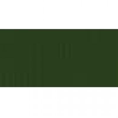 Bazzill avocado - avocat 12x12